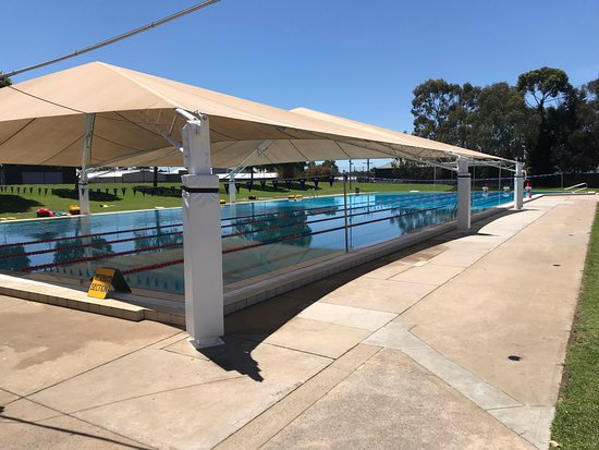 Mount Gambier Swimming Club
